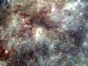 Flight through the Tarantula Nebula