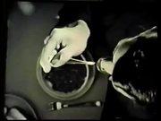 Chex Mates (1963)