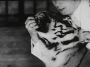 Coney Island - Wild Tiger Act 1940
