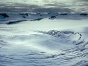 To the Arctic - Meryl Streep Featurette