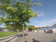 Marina Boulevard, Vancouver
