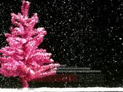 Funky Christmas Tree