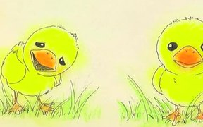 Ugly Duckling Animation
