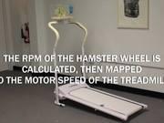 Hamster Treadmill