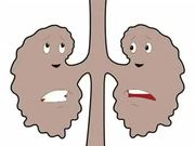Kidney Animation in English