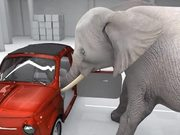 Elephant Trying the Impossible