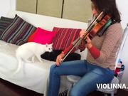 Violinna Vs White Cat