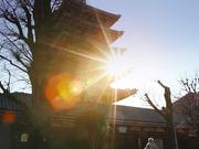 Episode 3 - Revolutionizing Education in Japan