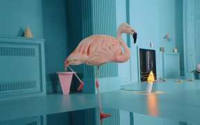 Chambord: Because No Reason Flamingo