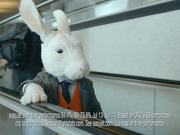 EasyJet Commercial: Bunny Song with Hugh Laurie