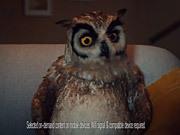 Virgin Campaign: Night Owl
