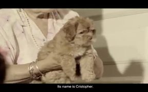 LAC Commercial: Puppy