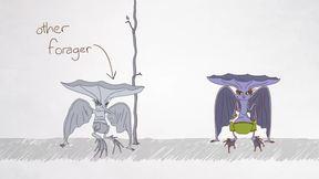 Animation - Climate Kid