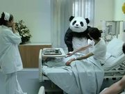 Panda Cheese Commercial: Never Say No to Panda