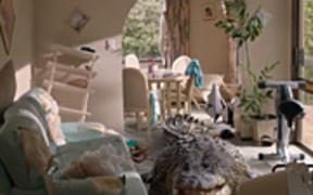 The Co-operative Bank Video: Crocodile Brian
