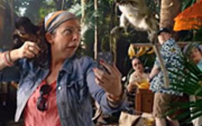 Hotels Commercial: Monkey