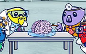 Ask an Expert : Neuroscience