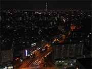 Tokyo Nightscapes