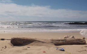Coastal Commission Video: Coastal Cleanup Day