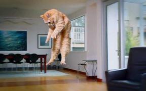 ASPCA Campaign: Hovercat