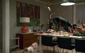 Vizio Commercial: Turkey Dinner