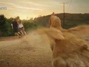 Reebok Commercial: Live Free Range