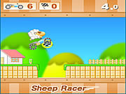 Sheep Racer