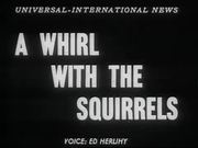Whirl with the Squirrels