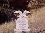 The Nasty Rabbit 1964