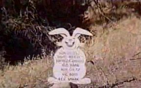 The Nasty Rabbit 1964